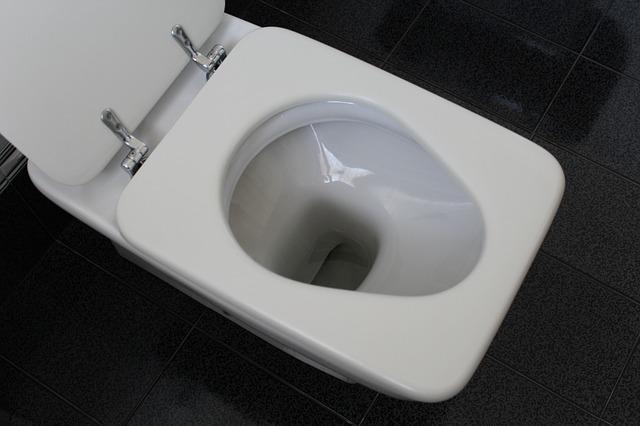 wc mísa