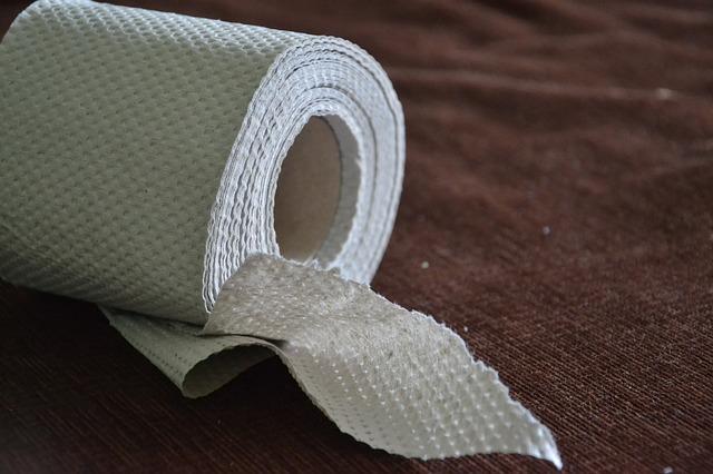 toaletní papír.jpg