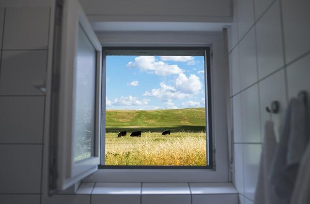 okno na pastvinu.jpg
